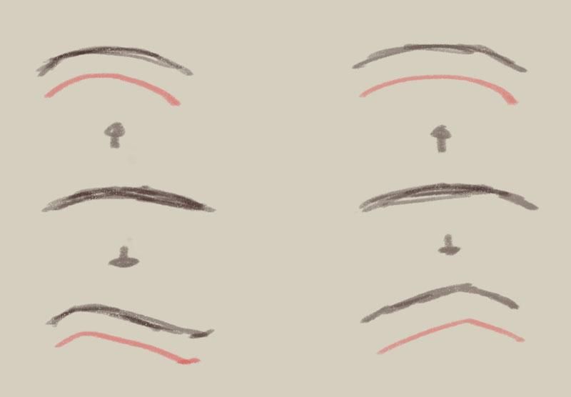 表情の描き方08眉の表情